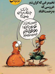 گرانی تخم مرغ